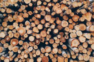 Brennholz online kaufen